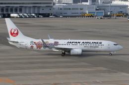 ゴンタさんが、中部国際空港で撮影した日本航空 737-846の航空フォト(飛行機 写真・画像)