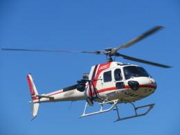 ランチパッドさんが、静岡ヘリポートで撮影した朝日航洋 AS350B3 Ecureuilの航空フォト(飛行機 写真・画像)