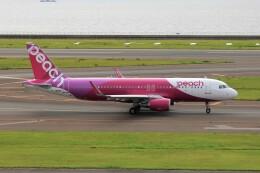 フッ軽の極美さんが、中部国際空港で撮影したピーチ A320-214の航空フォト(飛行機 写真・画像)