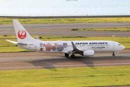 フッ軽の極美さんが、中部国際空港で撮影した日本航空 737-846の航空フォト(飛行機 写真・画像)