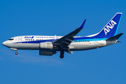 Tatsuya.Kさんが、羽田空港で撮影した全日空 737-781の航空フォト(飛行機 写真・画像)