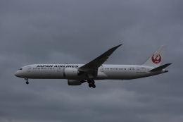 Love NRTさんが、成田国際空港で撮影した日本航空 787-9の航空フォト(飛行機 写真・画像)