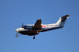 Love NRTさんが、成田国際空港で撮影した日本法人所有 B200 Super King Airの航空フォト(飛行機 写真・画像)