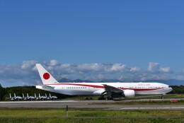 カシオペアさんが、千歳基地で撮影した航空自衛隊 777-3SB/ERの航空フォト(飛行機 写真・画像)