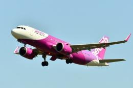 もえちゃんさんが、仙台空港で撮影したピーチ A320-251Nの航空フォト(飛行機 写真・画像)