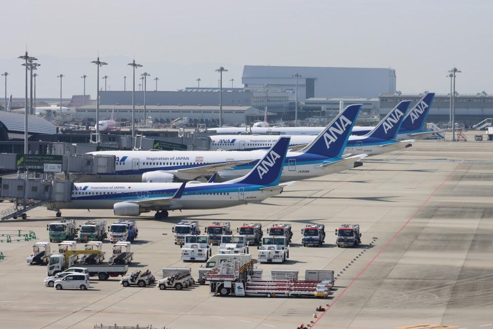 uhfxさんの全日空 Boeing 787-8 Dreamliner (JA838A) 航空フォト