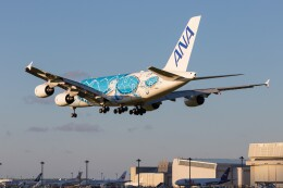 walker2000さんが、成田国際空港で撮影した全日空 A380-841の航空フォト(飛行機 写真・画像)