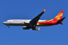 Deepさんが、成田国際空港で撮影した海南航空 737-84Pの航空フォト(飛行機 写真・画像)