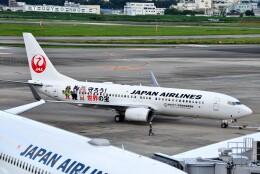 T.Sazenさんが、伊丹空港で撮影した日本航空 737-846の航空フォト(飛行機 写真・画像)