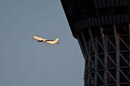 まいけるさんが、東京・浅草上空で撮影した日本航空 767-346/ERの航空フォト(飛行機 写真・画像)