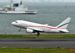 パール大山さんが、羽田空港で撮影したグローバル・ジェット・ルクセンブルク A318-112 CJ Eliteの航空フォト(飛行機 写真・画像)