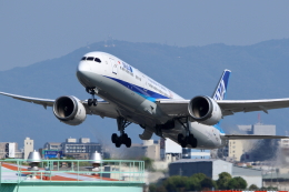kaz787さんが、伊丹空港で撮影した全日空 787-9の航空フォト(飛行機 写真・画像)
