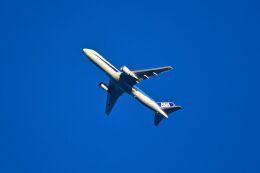 まいけるさんが、東京・浅草上空で撮影した全日空 767-381/ERの航空フォト(飛行機 写真・画像)