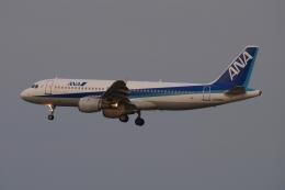 木人さんが、成田国際空港で撮影した全日空 A320-211の航空フォト(飛行機 写真・画像)