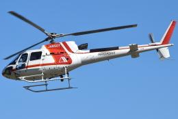 jun☆さんが、静岡ヘリポートで撮影した朝日航洋 AS350B3 Ecureuilの航空フォト(飛行機 写真・画像)