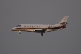 木人さんが、成田国際空港で撮影した不明 Gulfstream G200の航空フォト(飛行機 写真・画像)