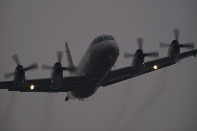 下総航空基地 - Shimofusa Air Base [RJTL]で撮影された下総航空基地 - Shimofusa Air Base [RJTL]の航空機写真(フォト・画像)