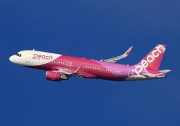 LOTUSさんが、関西国際空港で撮影したピーチ A320-214の航空フォト(飛行機 写真・画像)