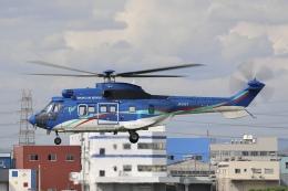 Hii82さんが、八尾空港で撮影した東北エアサービス AS332L1の航空フォト(飛行機 写真・画像)