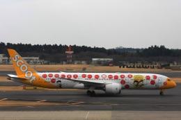 S.Hayashiさんが、成田国際空港で撮影したスクート (〜2017) 787-9の航空フォト(飛行機 写真・画像)