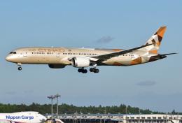 saoya_saodakeさんが、成田国際空港で撮影したエティハド航空 787-9の航空フォト(飛行機 写真・画像)