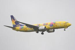 YouKeyさんが、新千歳空港で撮影したスカイマーク 737-8ALの航空フォト(飛行機 写真・画像)