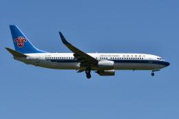 Deepさんが、成田国際空港で撮影した中国南方航空 737-86Nの航空フォト(飛行機 写真・画像)
