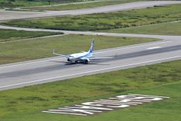 さとさとさんが、石垣空港で撮影した全日空 737-881の航空フォト(飛行機 写真・画像)