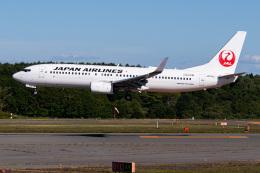 航空フォト:JA314J 日本航空 737-800
