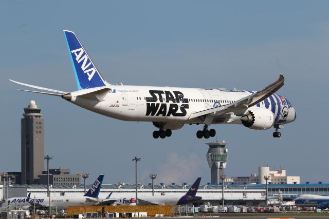 やまけんさんが、成田国際空港で撮影した全日空 787-9の航空フォト(飛行機 写真・画像)