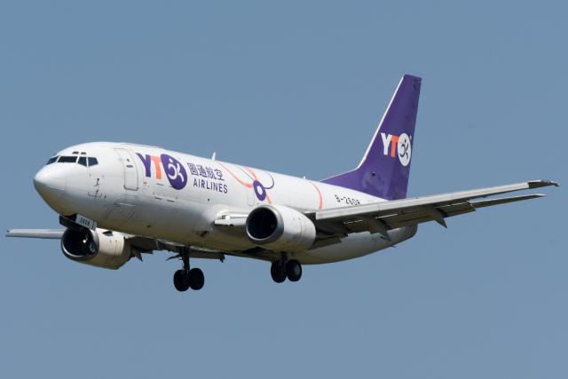 panchiさんが、成田国際空港で撮影したYTOカーゴ・エアラインズ 737-36Q(SF)の航空フォト(飛行機 写真・画像)