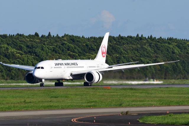 rangeroverさんが、成田国際空港で撮影した日本航空 787-8 Dreamlinerの航空フォト(飛行機 写真・画像)