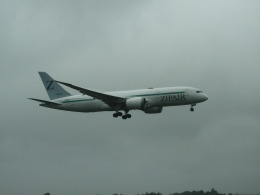 EITO #NRTさんが、成田国際空港で撮影したZIPAIR 787-8 Dreamlinerの航空フォト(飛行機 写真・画像)