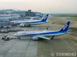 遠森一郎さんが、福岡空港で撮影した全日空 737-881の航空フォト(飛行機 写真・画像)