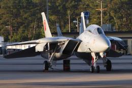 Talon.Kさんが、オシアナ海軍航空基地アポロソーセックフィールドで撮影したアメリカ海軍 F-14B Tomcatの航空フォト(飛行機 写真・画像)