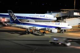 timeさんが、羽田空港で撮影した全日空 A320-211の航空フォト(飛行機 写真・画像)