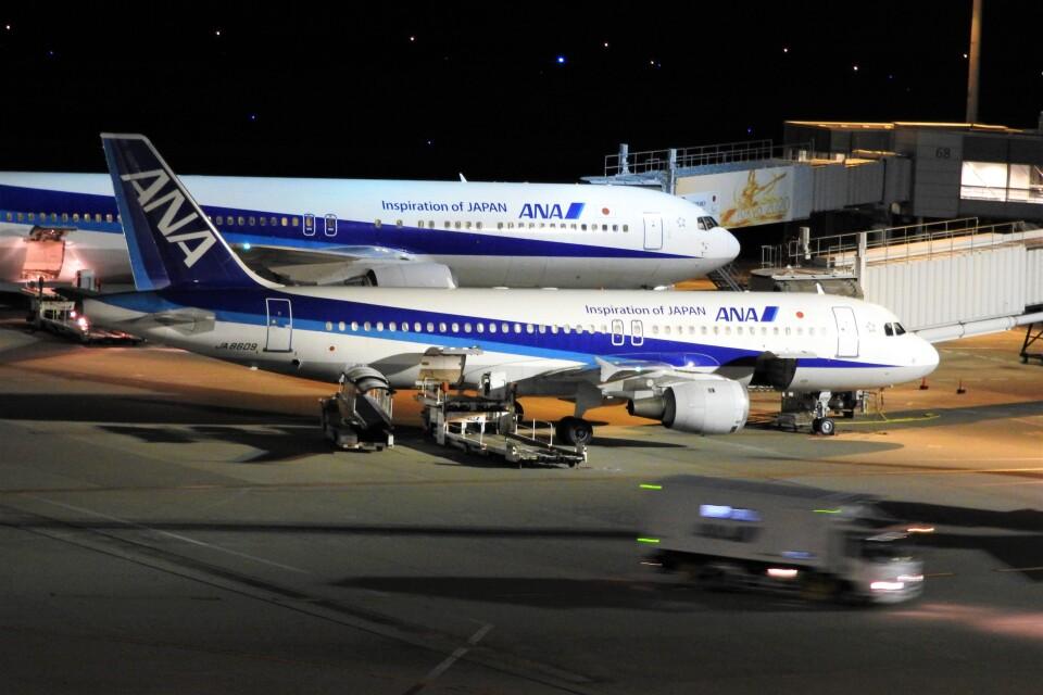 timeさんの全日空 Airbus A320 (JA8609) 航空フォト