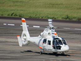 ランチパッドさんが、静岡空港で撮影した北海道航空 AS365N2 Dauphin 2の航空フォト(飛行機 写真・画像)