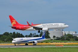 ポン太さんが、成田国際空港で撮影した深圳航空 737-86Nの航空フォト(飛行機 写真・画像)