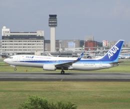 sakura saidaさんが、伊丹空港で撮影した全日空 737-8ALの航空フォト(飛行機 写真・画像)