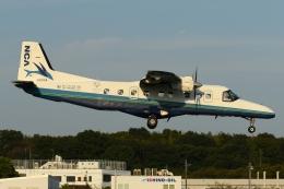 N.tomoさんが、調布飛行場で撮影した新中央航空 228-212の航空フォト(飛行機 写真・画像)
