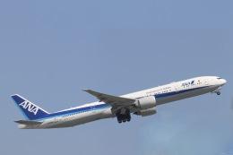 天王寺王子さんが、羽田空港で撮影した全日空 777-381/ERの航空フォト(飛行機 写真・画像)