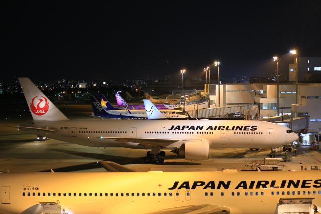 aki241012さんが、福岡空港で撮影した日本航空 777-246/ERの航空フォト(飛行機 写真・画像)