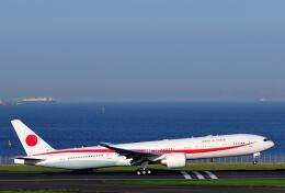 シグナス021さんが、羽田空港で撮影した航空自衛隊 777-3SB/ERの航空フォト(飛行機 写真・画像)