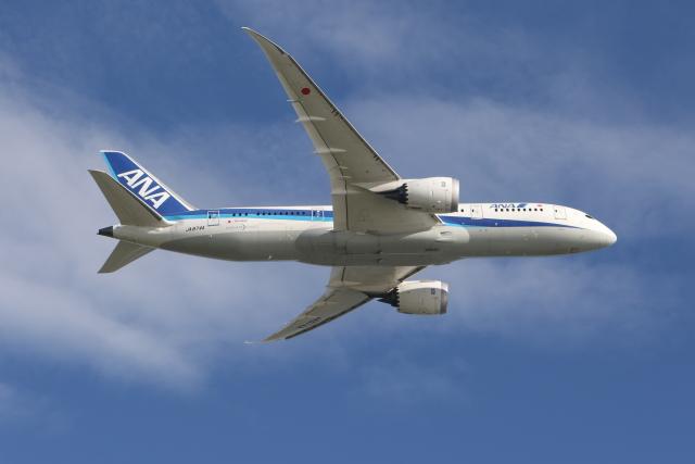サリーちゃんのパパさんが、羽田空港で撮影した全日空 787-8 Dreamlinerの航空フォト(飛行機 写真・画像)