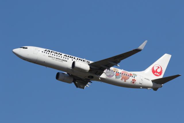 安芸あすかさんが、新千歳空港で撮影した日本航空 737-846の航空フォト(飛行機 写真・画像)