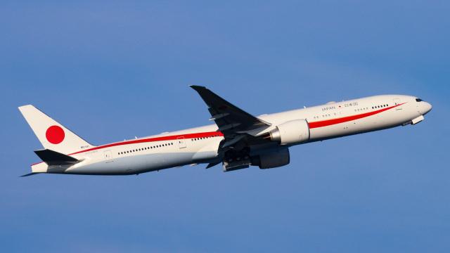 Bluewingさんが、羽田空港で撮影した航空自衛隊 777-3SB/ERの航空フォト(飛行機 写真・画像)