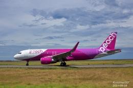 kodamax007さんが、新潟空港で撮影したピーチ A320-214の航空フォト(飛行機 写真・画像)