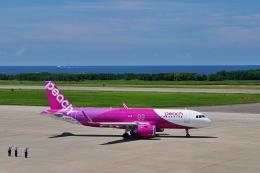 kodamax007さんが、新潟空港で撮影したピーチ A320-251Nの航空フォト(飛行機 写真・画像)