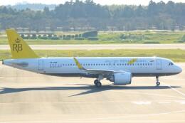 cassiopeiaさんが、成田国際空港で撮影したロイヤルブルネイ航空 A320-251Nの航空フォト(飛行機 写真・画像)